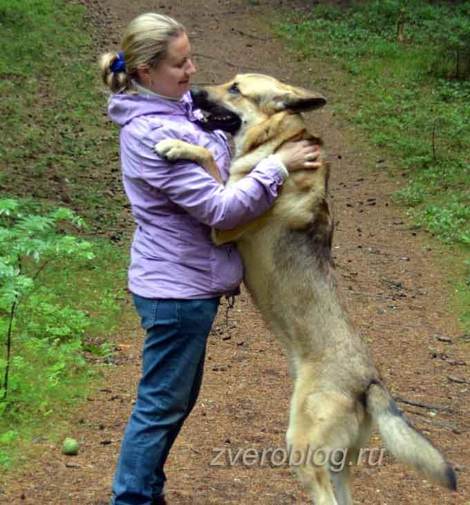 Джек обнимает хозяйку Анну