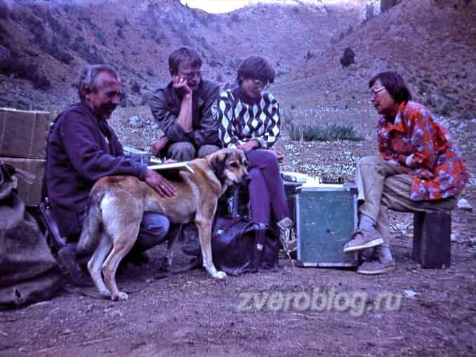 геологическая экспедиция на Гиссарский хребет в Узбекистан