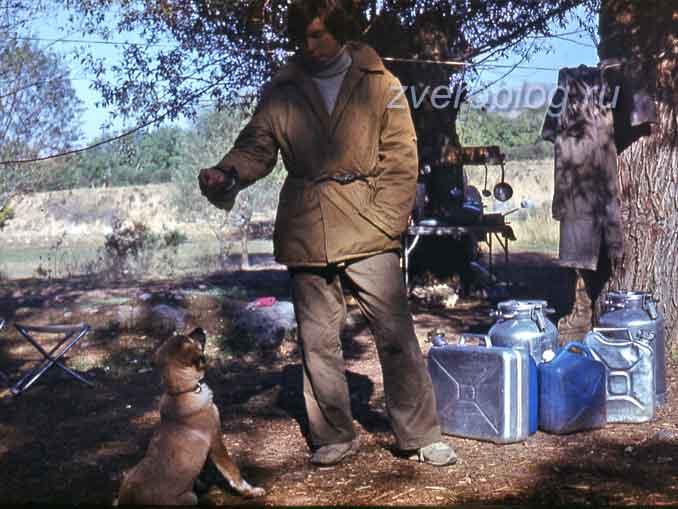 Лагерь геологов с собакой на Южных склонах Гиссарского хребета, на границу с Таджикистаном
