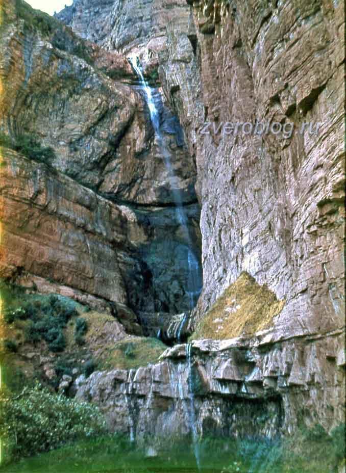 Узбекистан, Сариасийский район, Южные склоны Гиссарского хребета, горный водопад