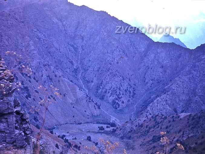 Наш лагерь с высоты 4 км, Узбекистан, Гиссарский хребет